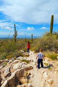 Hiking Trail Scottsdale